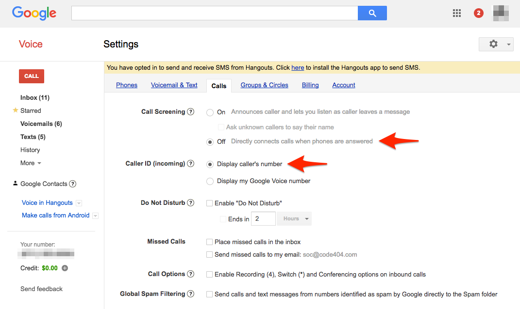Google Voice settings